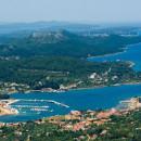 marine olive island